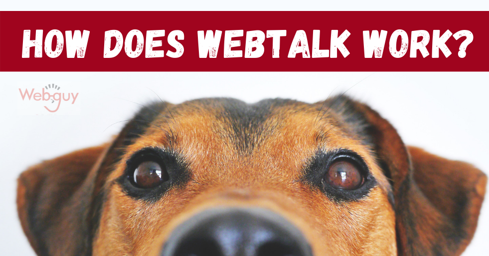 How does webtalk work?